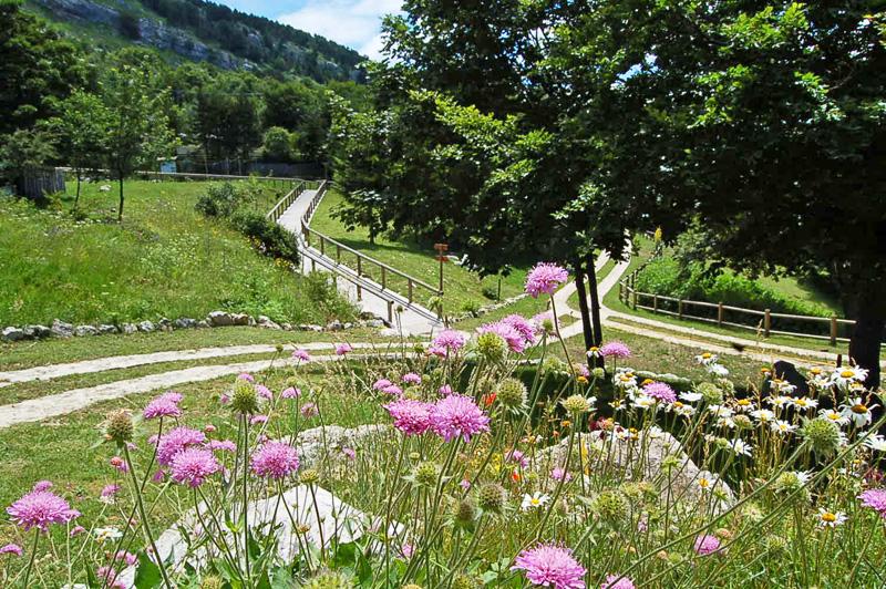 Giardino Botanico Flora Appenninica Scelte per te Giardino