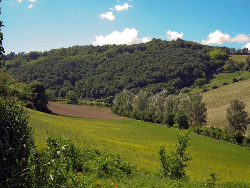 Giardino Botanico Selva di Gallignano Scelte per te Giardino