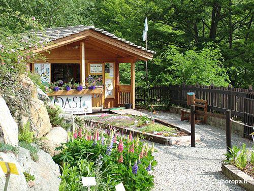 Giardino Botanico Montano Oropa Scelte per te Giardino