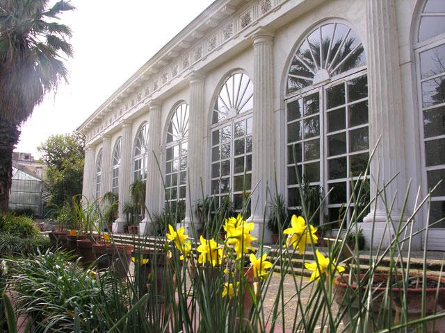 Giardino Botanico Napoli Scelte per te Giardino