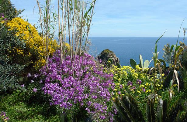 Giardino Botanico Ponziano Scelte per te Giardino