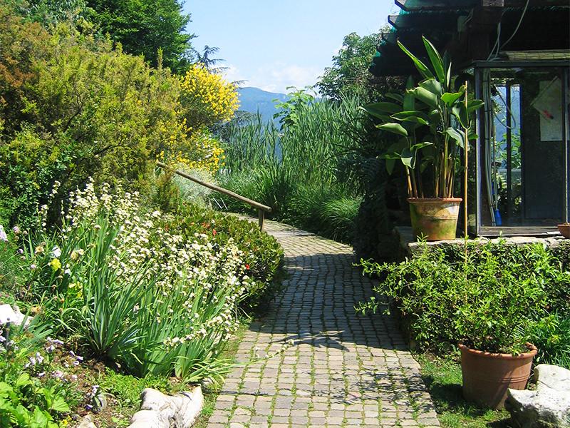 Orto Botanico di Bergamo 'Lorenzo Rota' Scelte per te Giardino