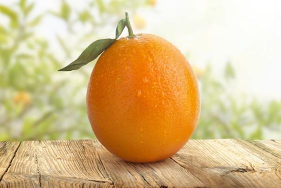 Arancia Ovale