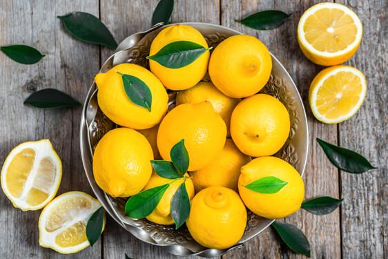Limone di rocca imperiale igp scelte per te for Coltivare limoni
