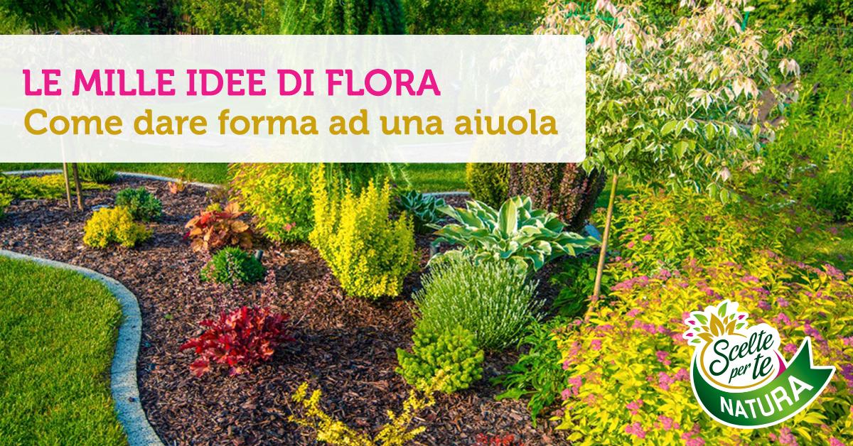 Come dare forma ad una aiuola scelte per te for Conad arredo giardino 2017