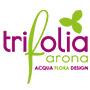 Trifolia