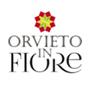 Orvieto in Fiore