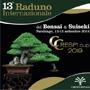 Crespi Cup 2019 - 13° Raduno Internazionale del Bonsai & Suiseki