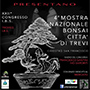 4a Mostra Nazionale del Bonsai città di Trevi