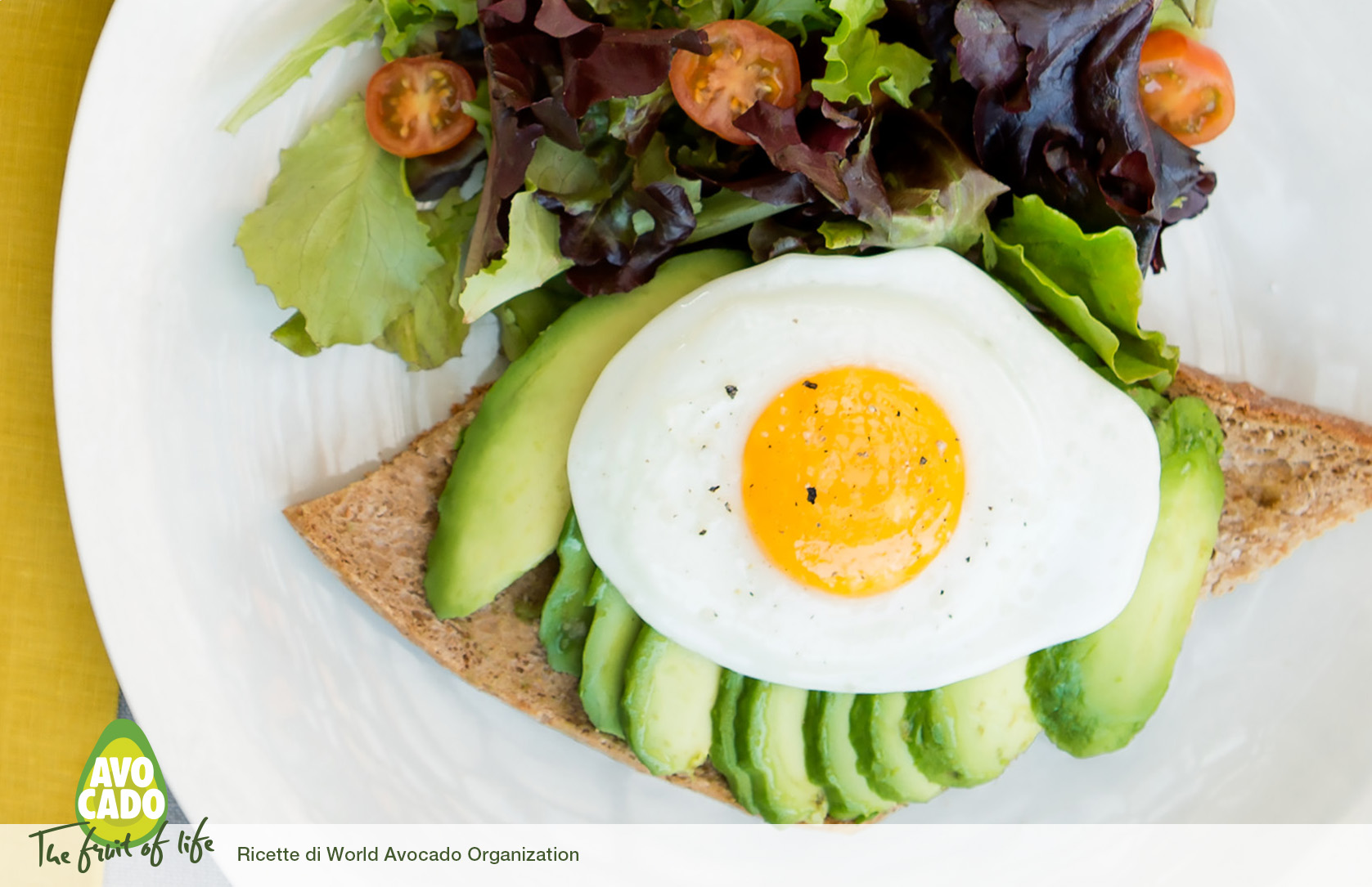 Super Toast Proteico