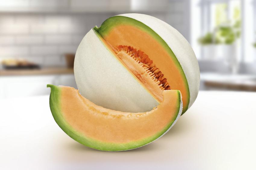 Melone liscio
