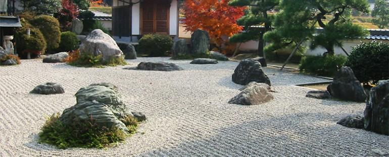 Giardino D Inverno Giapponese : Piante giardino giapponese idee per il design della casa