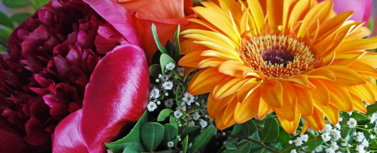 Festa della Mamma: Piante e Fiori da Regalare a una Persona Speciale!