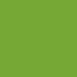 Storia e curiosità sulla Zucchina Verde