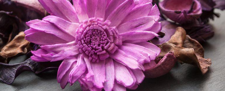 Come utilizzare i fiori secchi