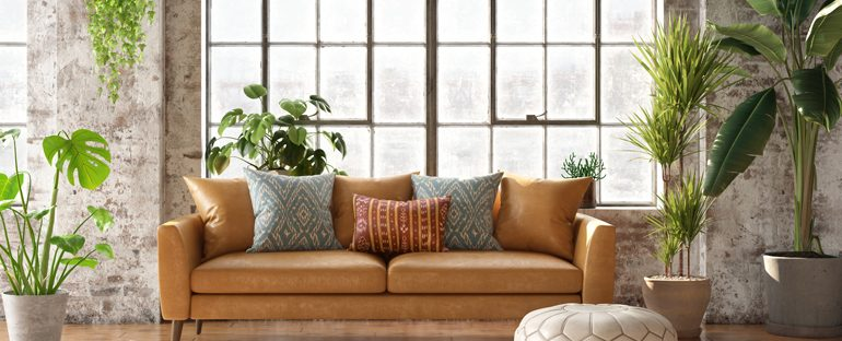 Idee per arredare casa con le piante da interno